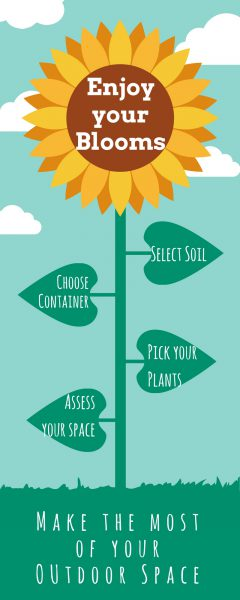 container garden infographic