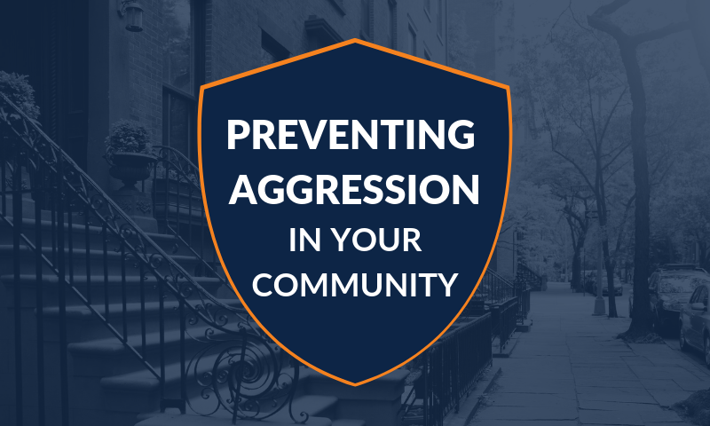 Preventing Aggression in Your Community